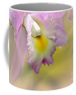 Orchid Whisper Coffee Mug