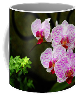 Orchids And Ivy Coffee Mug by Trina  Ansel