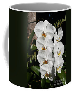 Coffee Mug featuring the photograph Orchids Anna by The Art of Alice Terrill