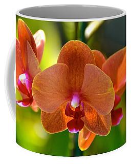 Orchids  Coffee Mug by Lehua Pekelo-Stearns