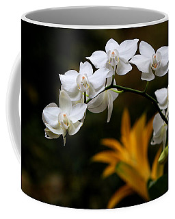 Coffee Mug featuring the photograph Orchids by John Freidenberg