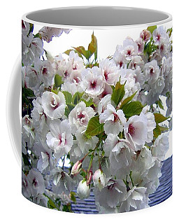 Oregon Cherry Blossoms Coffee Mug