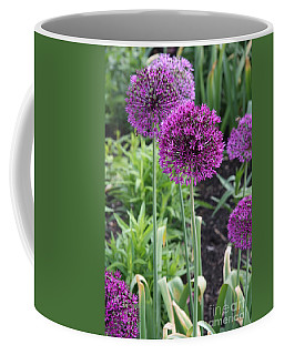 Coffee Mug featuring the photograph Ornamental Leek Flower by Christiane Schulze Art And Photography