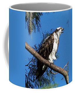 Osprey 102 Coffee Mug