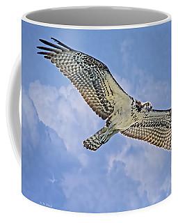 Osprey 91711 Coffee Mug by Deborah Benoit