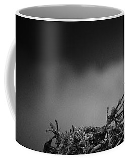 Osprey Coffee Mug by Bradley R Youngberg