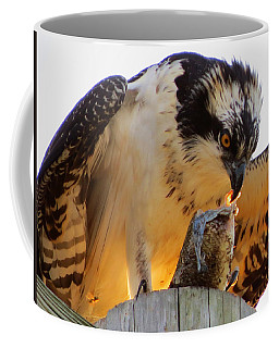 Coffee Mug featuring the photograph Osprey Breakfast by Dianne Cowen
