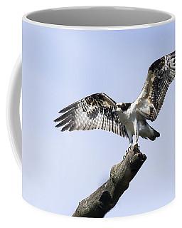 Osprey Pride  Coffee Mug