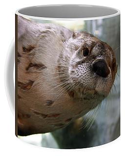 Otter Be Lookin' At You Kid Coffee Mug by John Haldane