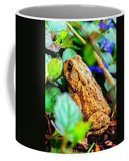 Our Backyard Visitor Coffee Mug