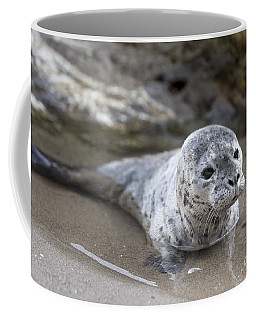 Coffee Mug featuring the photograph Out For A Swim by David Millenheft