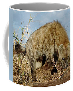 Out Of Africa Hyena 1 Coffee Mug