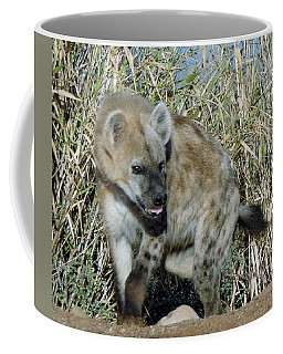 Out Of Africa  Hyena 2 Coffee Mug