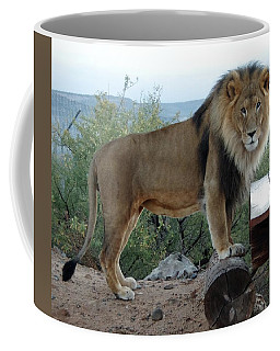 Out Of Africa  Lion 1 Coffee Mug