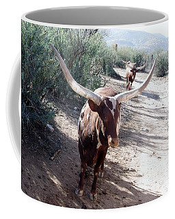 Out Of Africa  Long Horns Coffee Mug