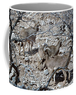 Out Of Africa  Mountain Goats Coffee Mug