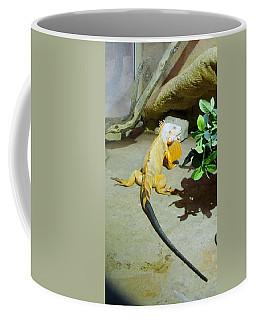 Out Of Africa Orange Lizard 2  Coffee Mug