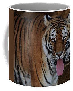Out Of Africa  Tiger 2 Coffee Mug