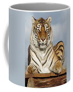 Out Of Africa Tiger 4 Coffee Mug