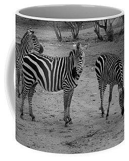 Out Of Africa  Zebras Coffee Mug