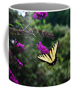 Coffee Mug featuring the photograph Out Of Bounds by Judy Wolinsky