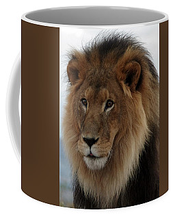 Out Ofafrica  Lion 4 Coffee Mug