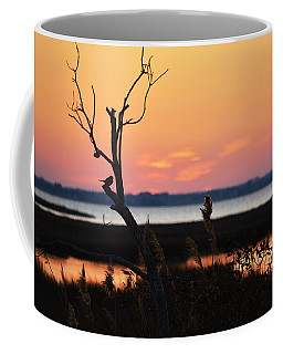 Coffee Mug featuring the photograph Ocean City Sunset Out On A Limb by Bill Swartwout