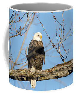 Coffee Mug featuring the photograph Overlooking Freedom by Steven Santamour