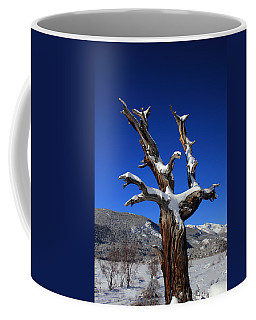 Overlooking The Valley Coffee Mug