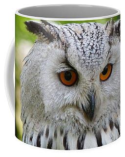 Coffee Mug featuring the photograph Owl Bird Animal Eagle Owl by Paul Fearn