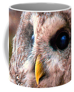 Owl Gaze Coffee Mug by Adam Olsen