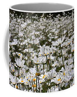 Ox Eye Daisies Coffee Mug