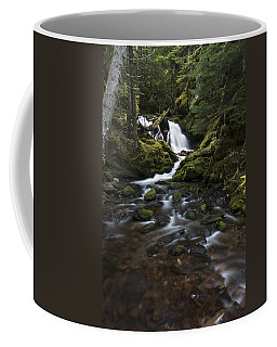 Packer Falls #3 Coffee Mug