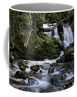 Packer Falls And Creek Coffee Mug