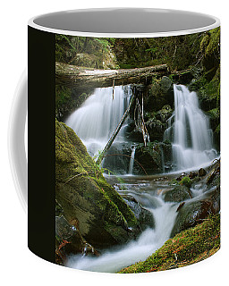 Packer Falls Coffee Mug
