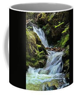 Packer Falls Vert 1 Coffee Mug