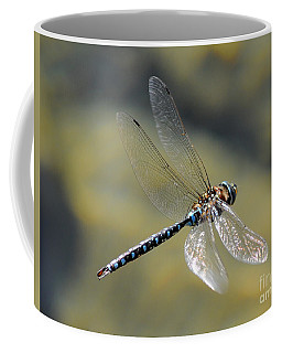 Coffee Mug featuring the photograph Paddletail Darner In Flight by Vivian Christopher