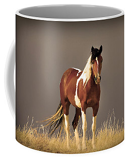 Paint Filly Wild Mustang Sepia Sky Coffee Mug