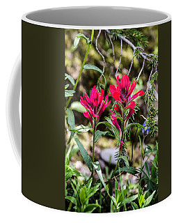 Coffee Mug featuring the photograph Paintbrush by Michael Chatt