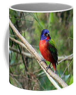 Coffee Mug featuring the photograph Painted Bunting Photo by Meg Rousher
