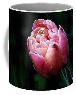 Painted Tulip Coffee Mug