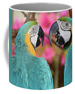 Pair Of Blue And Gold Macaws Engaged Coffee Mug