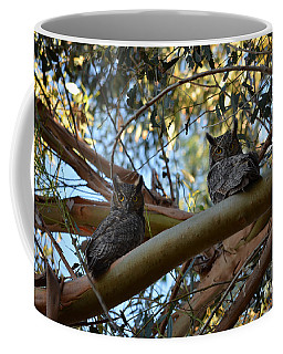 Pair Of Great Horned Owls Coffee Mug
