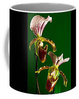 Coffee Mug featuring the photograph Pair Of Lady Slipper Orchids by Elf Evans