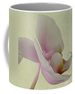 Pale Orchid On Cream Coffee Mug by Barbie Corbett-Newmin