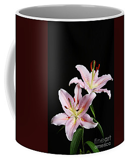 Pale Pink Asiatic Lilies Coffee Mug by Judy Whitton