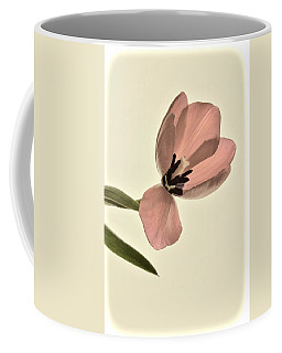 Pale Pink Tulip Coffee Mug