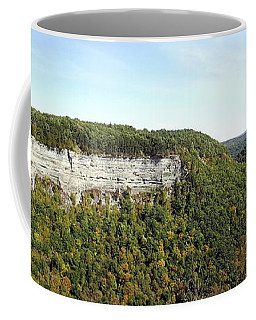 Panorama Of Cliff At Letchworth State Park Coffee Mug