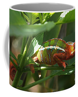 Panther Chameleon Madagascar 1 Coffee Mug by Rudi Prott