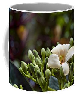 Papaya Flower Coffee Mug